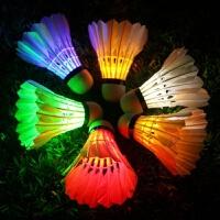 耐打羽毛球 LED夜光室外羽毛球带灯发光发亮羽毛球夜用娱乐变色闪光10只鹅毛训练羽毛球