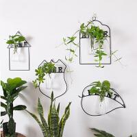 水培玻璃花瓶悬挂式水培插花绿萝创意居家装饰品小花瓶装饰品