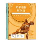 精准瑜伽解剖书:流瑜伽及站姿体式+身体前弯及髋关节伸展体式(套装共2册)[精选套装]