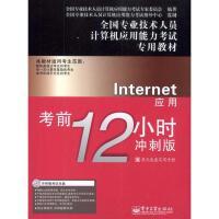 Internet应用考前12小时:冲刺版 全国专业技术人员计算机应用能力考试专家委员会
