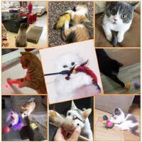 新款猫自嗨逗猫棒耐咬羽毛铃铛神器逗猫玩具小猫猫薄荷球猫咪用品