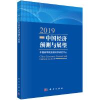 2019中国经济预测与展望