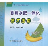 香蕉水肥一体化技术图解