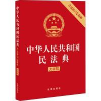 中华人民共和国民法典 含*司法解释 大字版 法律出版社