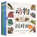 动物面对面(全4册)