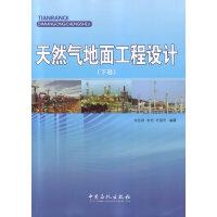 天然气地面工程设计(下卷)