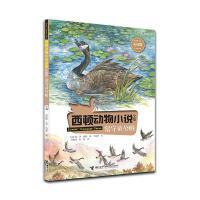 西顿动物小说:留守的公雁(彩绘版)