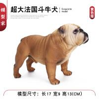 狗狗玩具宠物狗斗牛犬恶霸犬模型男女孩礼物仿真野生动物模型