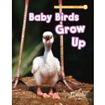 NGL美国国家地理学习Read on Your Own独立阅读系列 Grade 1 Baby Birds Grow U