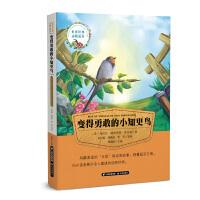 世界经典动物故事 变得勇敢的小知更鸟