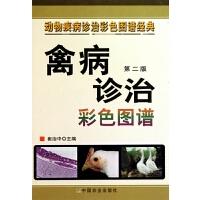 禽病诊治彩色图谱(第2版)(精)/动物疾病诊治彩色图谱经典