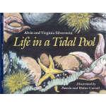 Life in a Tidal Pool (【按需印刷】)