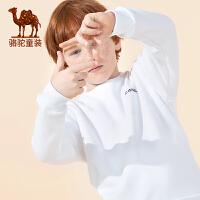 骆驼男童卫衣儿童2019春秋季秋装新款韩版潮洋气上衣中大童长袖