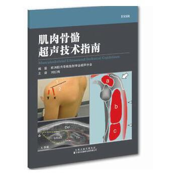 肌肉骨骼超声技术指南 编著 欧洲肌肉骨骼放射学会超声分会 主译 刘红梅 肩关节肘关节腕关节髋关节膝关节踝关节