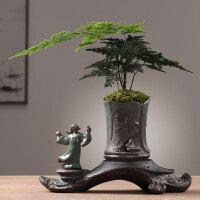 创意个性绿植文竹盆景植物家用室内盆栽专用陶瓷花盆客厅装饰摆件
