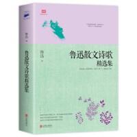鲁迅散文诗歌精选集(鲁迅散文、诗歌作品全收录)