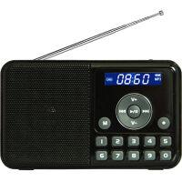 熊猫/PANDA DS-172 数码音响播放器 插卡音箱 立体声收音机 黑色
