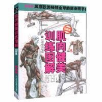肌肉健美训练图解 全新版 德拉威尔著 男性身材肌肉训练型男健美图详解 男士减肥塑身书籍书塑造健身全书籍
