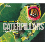 Face to Face with Caterpillars (National Geographic Kid) 美国国家地理面对面丛书:与毛毛虫面对面 ISBN9781426304736