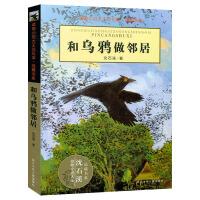 和乌鸦做邻居动物小说大王沈石溪品藏书系 儿童文学书籍7-8-9-10-12岁小学二三年级课外读物小学生课外畅销书