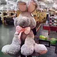 毛绒玩具美国兔子娃娃公仔可爱睡觉抱枕大号邦尼兔萌玩偶女孩韩国 灰色