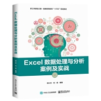 Excel数据处理与分析案例及实战(新工科建设之路普通高等教育十三五规划教材)
