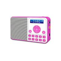 熊猫/PANDA DS-172 数码音响播放器 插卡音箱 立体声收音机 红色