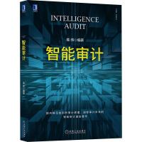 智能审计 机械工业出版社