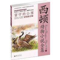 小木马童书 留守的公雁(彩绘拼音版)(第三辑)