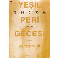 绿仙子之夜(土耳其当代文学丛书)