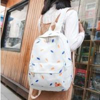 新款韩版帆布女包双肩包时尚印花女士背包休闲旅行包学生书包