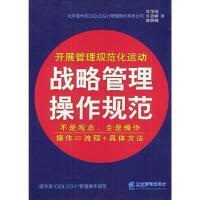 战略管理操作规范(文件夹版)高照娟 著;甘华鸣企业管理出版社