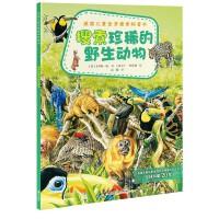 英国儿童全景搜索科普书:搜索珍稀的野生动物(英国Usborne王牌美绘科普书,20年经典,全景呈现+细节探幽+沉浸式体