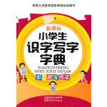 小学生识字写字字典(新课标/多功能双色本)
