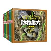 让孩子着迷的第一堂自然课系列 共9册