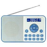熊猫/PANDA DS-172 数码音响播放器 插卡音箱 立体声收音机 蓝色