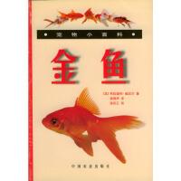 金鱼 宠物小百科