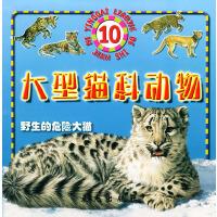 野生的危险大猫:大型猫科动物