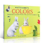 顺丰发货 英文原版 White Rabbit's Colors 白兔的颜色 吴敏兰推荐系列 3-4-5-6岁儿童颜色启