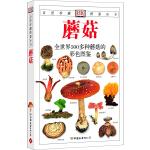蘑菇:全世界500多种蘑菇的彩色图鉴―自然珍藏图鉴丛书