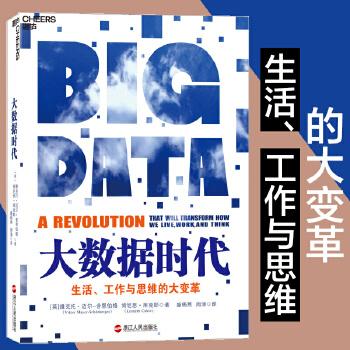 数据系列3:大数据时代(pdf+txt+epub+azw3+mobi电子书在线阅读下载)