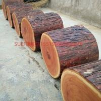 香椿木木墩子木凳子木桩树桩茶几腿大板底座根雕茶几木树墩