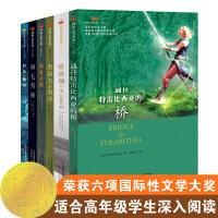 国际大奖小说・成长版(共6册)