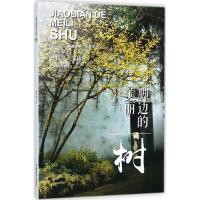 脚边的美丽树 中国林业出版社
