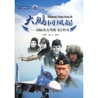 大鹏同风起--国际名人驾机飞行传奇/飞行系列丛书
