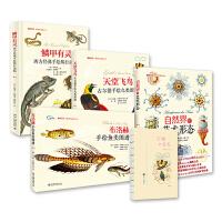 博物文库全四册套装:鳞甲有灵 天堂飞鸟 自然界的艺术形态 布洛赫手绘鱼类图谱(签名版)