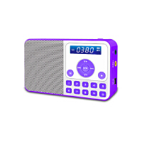 【当当自营】 熊猫/PANDA DS-172 数码音响播放器 插卡音箱 立体声收音机 紫色