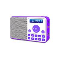 熊猫/PANDA DS-172 数码音响播放器 插卡音箱 立体声收音机 紫色