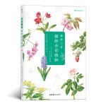 简单三步描绘水彩植物