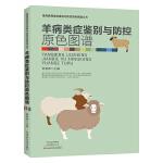 羊病类症鉴别与防控原色图谱